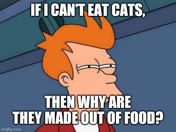 Futurama Fry Meme |  IF I CAN'T EAT CATS, THEN WHY ARE THEY MADE OUT OF FOOD? | image tagged in memes,futurama fry | made w/ Imgflip meme maker