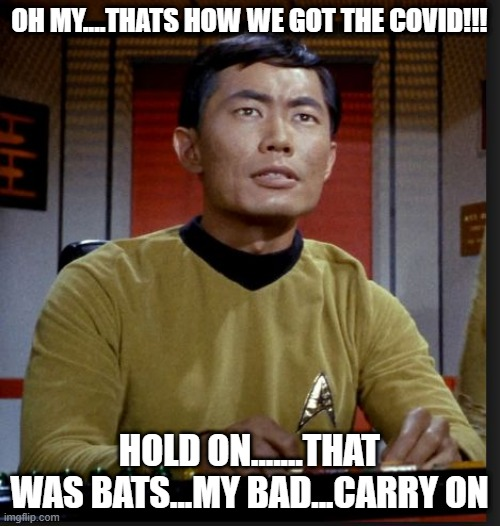 sulu | OH MY....THATS HOW WE GOT THE COVID!!! HOLD ON.......THAT WAS BATS...MY BAD...CARRY ON | image tagged in sulu | made w/ Imgflip meme maker