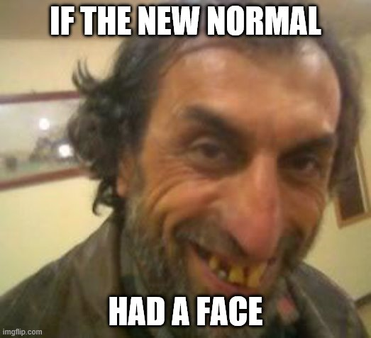 Ugly Guy |  IF THE NEW NORMAL; HAD A FACE | image tagged in ugly guy,covid-19,covidiots,quarantine,news,fake news | made w/ Imgflip meme maker