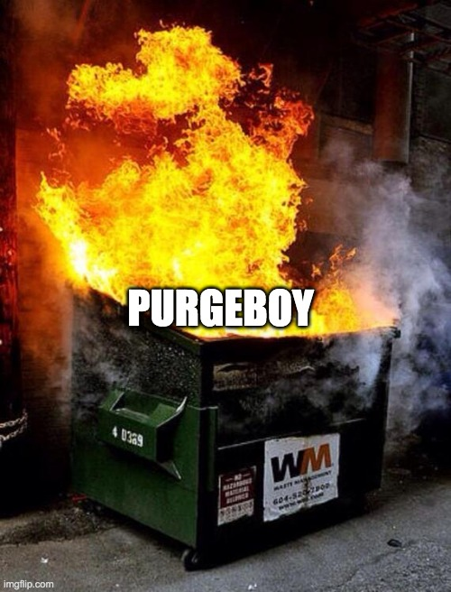 Dumpster Fire | PURGEBOY | image tagged in dumpster fire | made w/ Imgflip meme maker