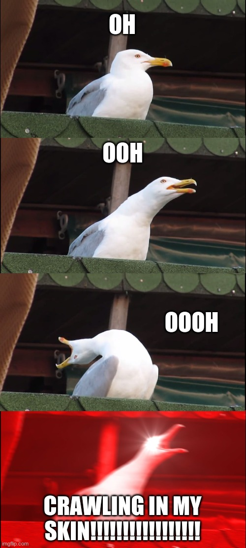 Inhaling Seagull Meme |  OH; OOH; OOOH; CRAWLING IN MY SKIN!!!!!!!!!!!!!!!!! | image tagged in memes,inhaling seagull | made w/ Imgflip meme maker