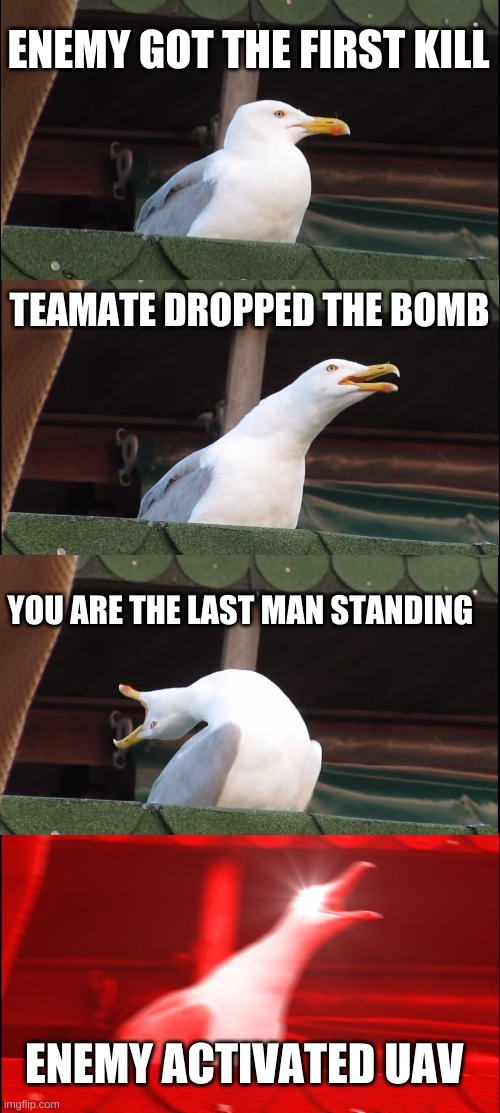 Search & Destroy |  ENEMY GOT THE FIRST KILL; TEAMATE DROPPED THE BOMB; YOU ARE THE LAST MAN STANDING; ENEMY ACTIVATED UAV | image tagged in inhaling seagull,call of duty week,call of duty,modern warfare,funny memes,you had one job | made w/ Imgflip meme maker