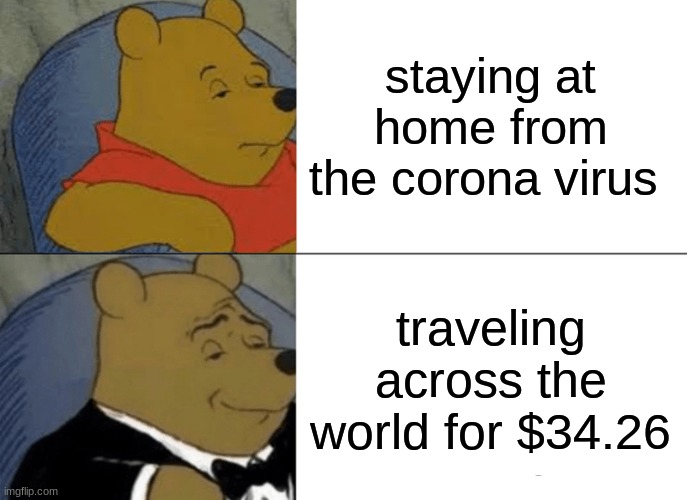 bruh |  staying at home from the corona virus; traveling across the world for $34.26 | image tagged in memes,tuxedo winnie the pooh | made w/ Imgflip meme maker