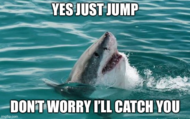 Friendly Shark | YES JUST JUMP DON'T WORRY I'LL CATCH YOU | image tagged in friendly shark | made w/ Imgflip meme maker