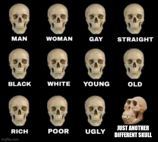 man woman gay straight skull |  JUST ANOTHER DIFFERENT SKULL | image tagged in man woman gay straight skull | made w/ Imgflip meme maker