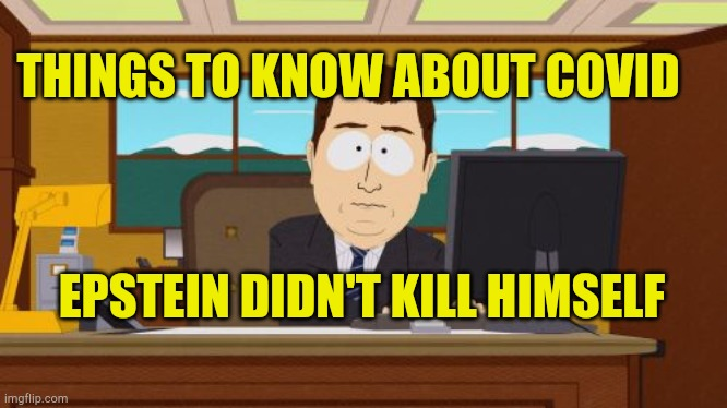 Aaaaand Its Gone |  THINGS TO KNOW ABOUT COVID; EPSTEIN DIDN'T KILL HIMSELF | image tagged in memes,aaaaand its gone | made w/ Imgflip meme maker