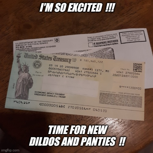 I'm online ordering now !! |  I'M SO EXCITED  !!! TIME FOR NEW DILDOS AND PANTIES  !! | image tagged in economic,stimulus,check,panties,dildos,jeffrey | made w/ Imgflip meme maker