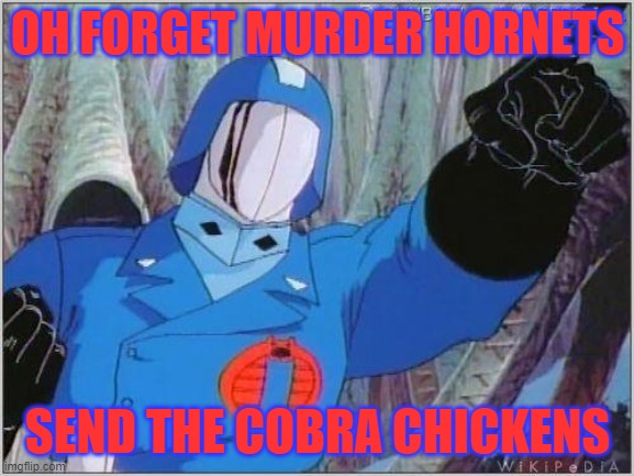 COBRA CHICKEN |  OH FORGET MURDER HORNETS; SEND THE COBRA CHICKENS | image tagged in cobra commander,geese,cobra | made w/ Imgflip meme maker