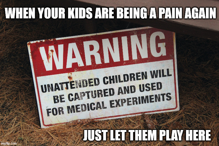 Just sayin'.... |  WHEN YOUR KIDS ARE BEING A PAIN AGAIN; JUST LET THEM PLAY HERE | image tagged in warning sign,sign,fun,funny,kids,children | made w/ Imgflip meme maker