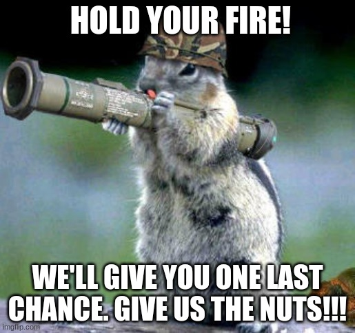 Bazooka Squirrel |  HOLD YOUR FIRE! WE'LL GIVE YOU ONE LAST CHANCE. GIVE US THE NUTS!!! | image tagged in memes,bazooka squirrel | made w/ Imgflip meme maker