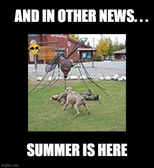 I do NOT want to go here |  AND IN OTHER NEWS. . . SUMMER IS HERE | image tagged in funny,summer,mosquito attack,mosquitoes,insects,summer vacation | made w/ Imgflip meme maker