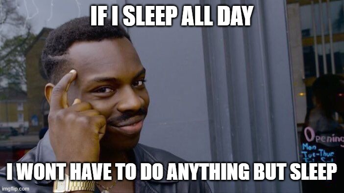 Roll Safe Think About It Meme |  IF I SLEEP ALL DAY; I WONT HAVE TO DO ANYTHING BUT SLEEP | image tagged in memes,roll safe think about it | made w/ Imgflip meme maker