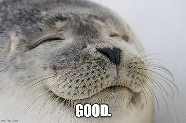 Satisfied Seal Meme | GOOD. | image tagged in memes,satisfied seal | made w/ Imgflip meme maker