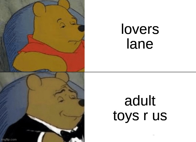tuxedo winnie the pooh |  lovers lane; adult toys r us | image tagged in memes,tuxedo winnie the pooh | made w/ Imgflip meme maker