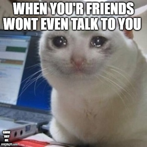 Crying cat |  WHEN YOU'R FRIENDS WONT EVEN TALK TO YOU; CAUSE THEY ALL HATE YOU | image tagged in crying cat | made w/ Imgflip meme maker