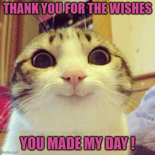 Thank you |  THANK YOU FOR THE WISHES; YOU MADE MY DAY ! | image tagged in memes,smiling cat | made w/ Imgflip meme maker