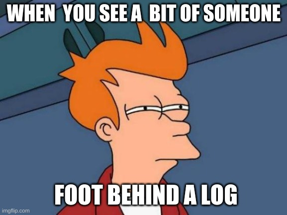 Futurama Fry Meme |  WHEN  YOU SEE A  BIT OF SOMEONE; FOOT BEHIND A LOG | image tagged in memes,futurama fry | made w/ Imgflip meme maker