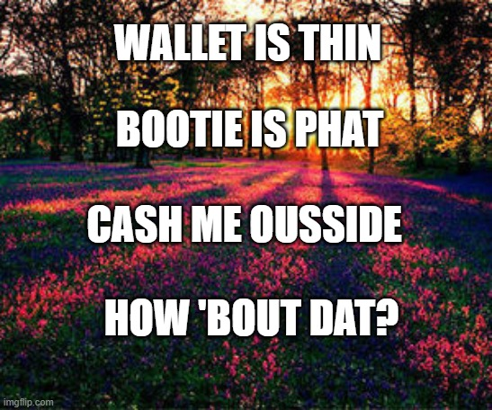 roses are red |  WALLET IS THIN; BOOTIE IS PHAT; CASH ME OUSSIDE; HOW 'BOUT DAT? | image tagged in roses are red,cash me ousside how bow dah,cash me ousside,cash me outside,poetry | made w/ Imgflip meme maker