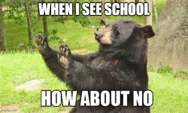 How About No Bear |  WHEN I SEE SCHOOL | image tagged in memes,how about no bear | made w/ Imgflip meme maker