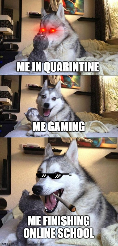 Me In Quarintine |  ME IN QUARINTINE; ME GAMING; ME FINISHING ONLINE SCHOOL | image tagged in memes,bad pun dog | made w/ Imgflip meme maker