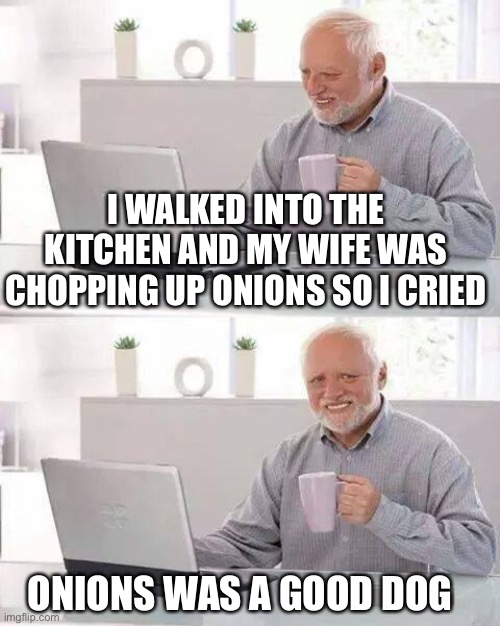 Poor boy |  I WALKED INTO THE KITCHEN AND MY WIFE WAS CHOPPING UP ONIONS SO I CRIED; ONIONS WAS A GOOD DOG | image tagged in memes,hide the pain harold,american chopper,onions,this is fine dog | made w/ Imgflip meme maker