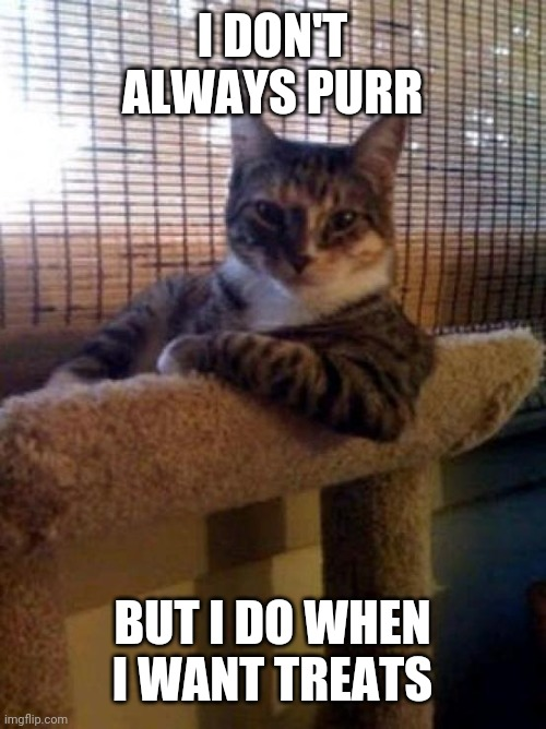 The Most Interesting Cat In The World Meme |  I DON'T ALWAYS PURR; BUT I DO WHEN I WANT TREATS | image tagged in memes,the most interesting cat in the world | made w/ Imgflip meme maker