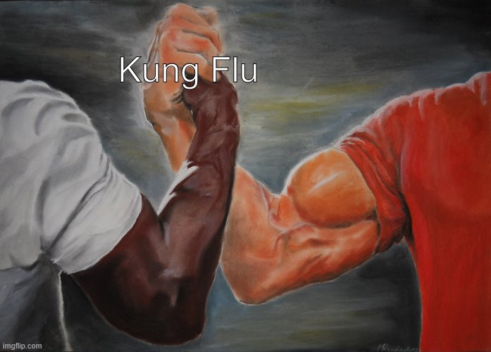 Kung Flu | image tagged in memes,epic handshake | made w/ Imgflip meme maker