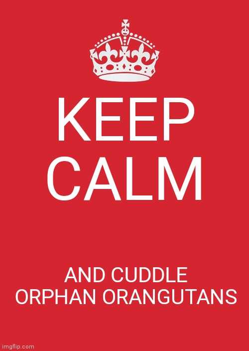 Keep Calm And Carry On Red |  KEEP CALM; AND CUDDLE ORPHAN ORANGUTANS | image tagged in memes,keep calm and carry on red | made w/ Imgflip meme maker
