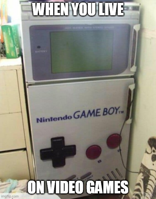 SHOULD BE GAME FRIDGE |  WHEN YOU LIVE; ON VIDEO GAMES | image tagged in refrigerator,nintendo,video games | made w/ Imgflip meme maker