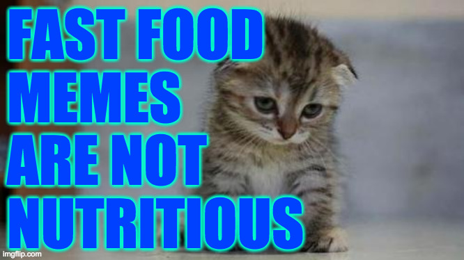 Sad kitten | FAST FOOD MEMES ARE NOT  NUTRITIOUS | image tagged in sad kitten | made w/ Imgflip meme maker