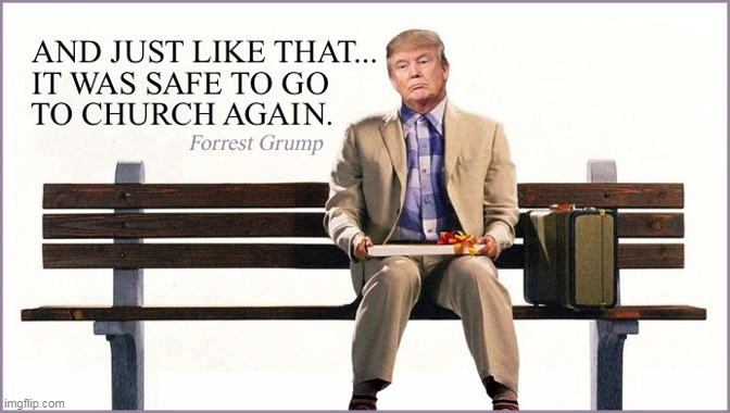 Stupid Is As Stupid Does? | image tagged in memes,funny,donald trump,covid-19,forrest gump | made w/ Imgflip meme maker