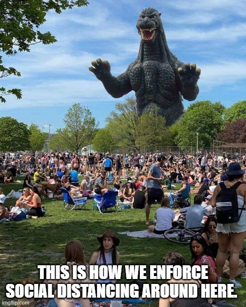 Social DIstancing Enforcement |  THIS IS HOW WE ENFORCE SOCIAL DISTANCING AROUND HERE. | image tagged in godzilla,social distancing | made w/ Imgflip meme maker