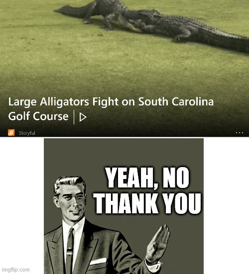 Nope |  YEAH, NO THANK YOU | image tagged in alligator,nope | made w/ Imgflip meme maker