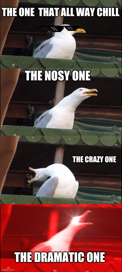 meet the seagull  family |  THE ONE  THAT ALL WAY CHILL; THE NOSY ONE; THE CRAZY ONE; THE DRAMATIC ONE | image tagged in memes,inhaling seagull | made w/ Imgflip meme maker