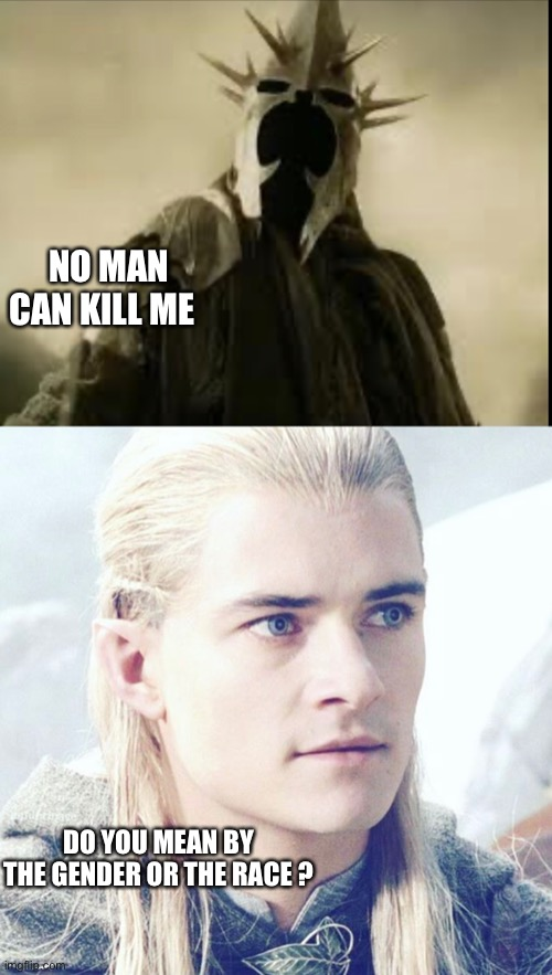 I am bad at making titles |  NO MAN CAN KILL ME; DO YOU MEAN BY THE GENDER OR THE RACE ? | image tagged in lord of the rings,legolas,return of the king | made w/ Imgflip meme maker