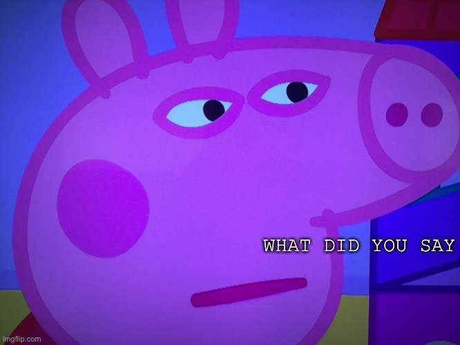 What did you say Peppa Pig | WHAT DID YOU SAY | image tagged in what did you say peppa pig | made w/ Imgflip meme maker