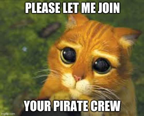 Please |  PLEASE LET ME JOIN; YOUR PIRATE CREW | image tagged in pirates,let me join,dont,read,these,tags | made w/ Imgflip meme maker