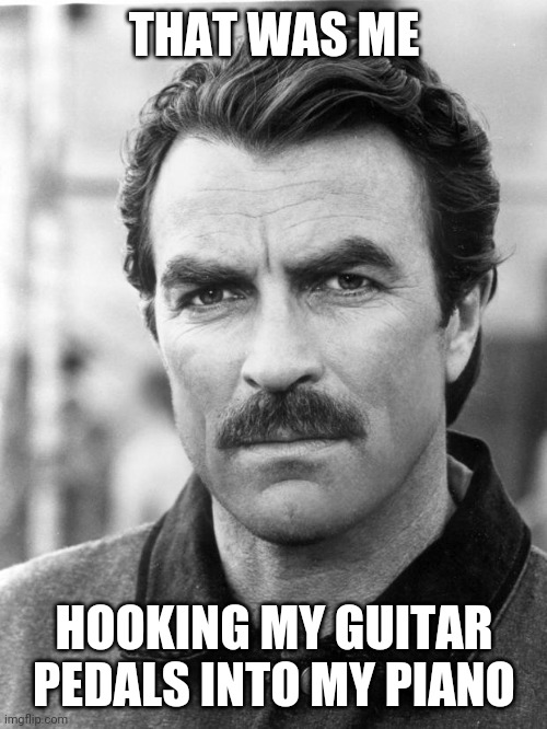 THAT WAS ME HOOKING MY GUITAR PEDALS INTO MY PIANO | image tagged in moustache | made w/ Imgflip meme maker