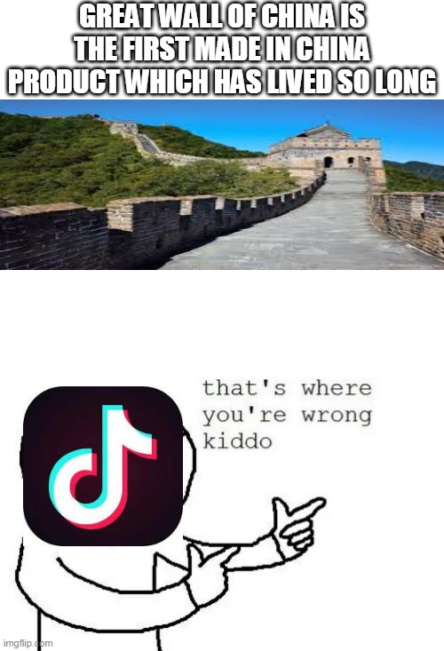 GREAT WALL OF CHINA IS THE FIRST MADE IN CHINA PRODUCT WHICH HAS LIVED SO LONG | image tagged in that's where you're wrong kiddo,tik tok,tiktok,china,made in china,long living | made w/ Imgflip meme maker