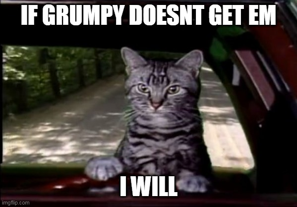toonces | IF GRUMPY DOESNT GET EM I WILL | image tagged in toonces | made w/ Imgflip meme maker