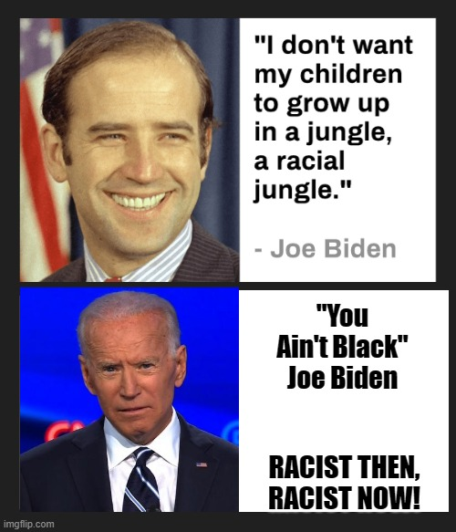 "Biden, Racist Then, Racist Now |  ""You Ain't Black"" Joe Biden; RACIST THEN, RACIST NOW! 