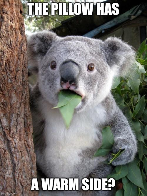 Surprised Koala Meme | THE PILLOW HAS A WARM SIDE? | image tagged in memes,surprised koala | made w/ Imgflip meme maker