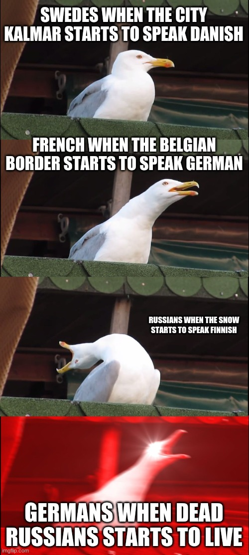 the war times |  SWEDES WHEN THE CITY KALMAR STARTS TO SPEAK DANISH; FRENCH WHEN THE BELGIAN BORDER STARTS TO SPEAK GERMAN; RUSSIANS WHEN THE SNOW STARTS TO SPEAK FINNISH; GERMANS WHEN DEAD RUSSIANS STARTS TO LIVE | image tagged in memes,inhaling seagull,war,ww1,ww2 | made w/ Imgflip meme maker