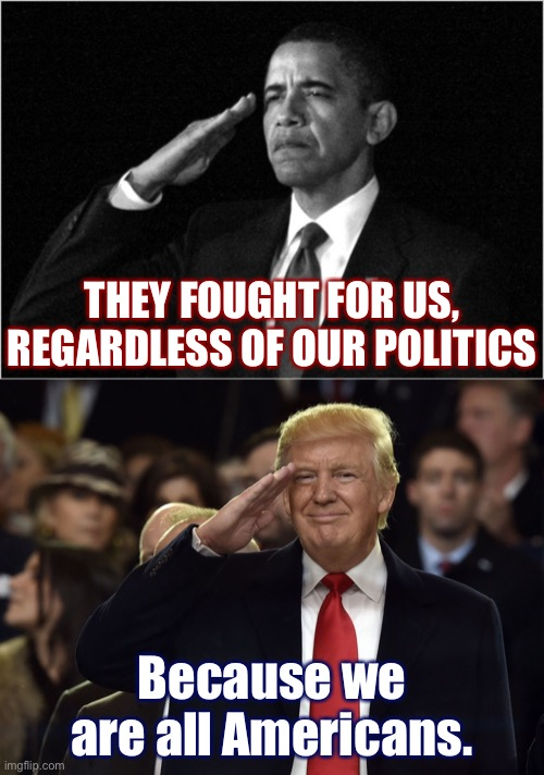 Today, let us put aside party and honor them. |  THEY FOUGHT FOR US, REGARDLESS OF OUR POLITICS; Because we are all Americans. | image tagged in trump salute maga,salute,patriotism,patriotic,barack obama,memorial day | made w/ Imgflip meme maker