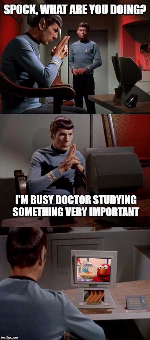 Concentrate Spock! |  SPOCK, WHAT ARE YOU DOING? I'M BUSY DOCTOR STUDYING SOMETHING VERY IMPORTANT | image tagged in spock watching tv | made w/ Imgflip meme maker