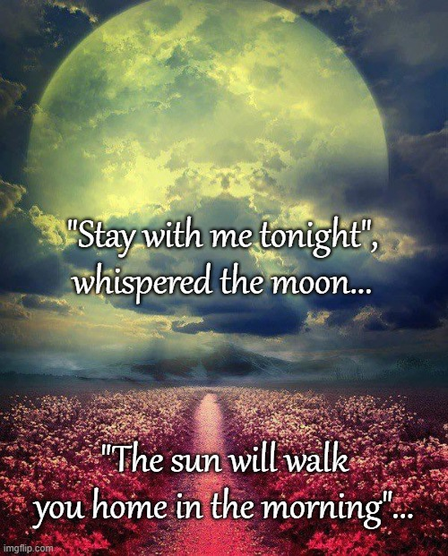 "Stay with me... |  ""Stay with me tonight"", whispered the moon... ""The sun will walk you home in the morning""... 