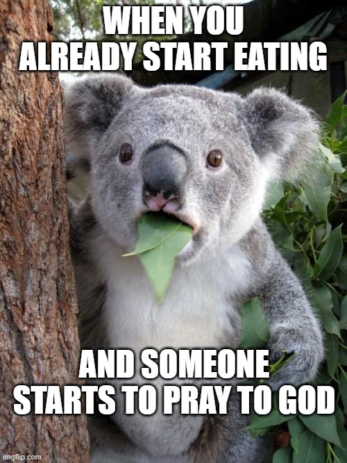 Surprised Koala Meme |  WHEN YOU ALREADY START EATING; AND SOMEONE STARTS TO PRAY TO GOD | image tagged in memes,surprised koala | made w/ Imgflip meme maker