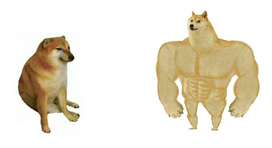 weak doge strong doge Blank Template - Imgflip