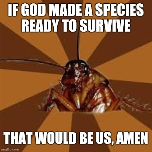 Cockroach |  IF GOD MADE A SPECIES READY TO SURVIVE; THAT WOULD BE US, AMEN | image tagged in cockroach | made w/ Imgflip meme maker