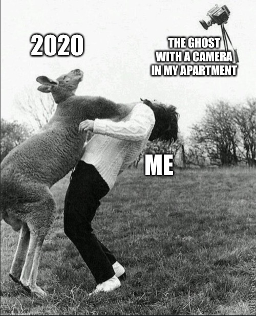 2020 |  ME; THE GHOST WITH A CAMERA IN MY APARTMENT; 2020 | image tagged in kangaroo,photography,ghosts | made w/ Imgflip meme maker